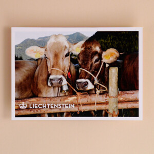 Magnet aus Holz Kuh Duo Liechtenstein